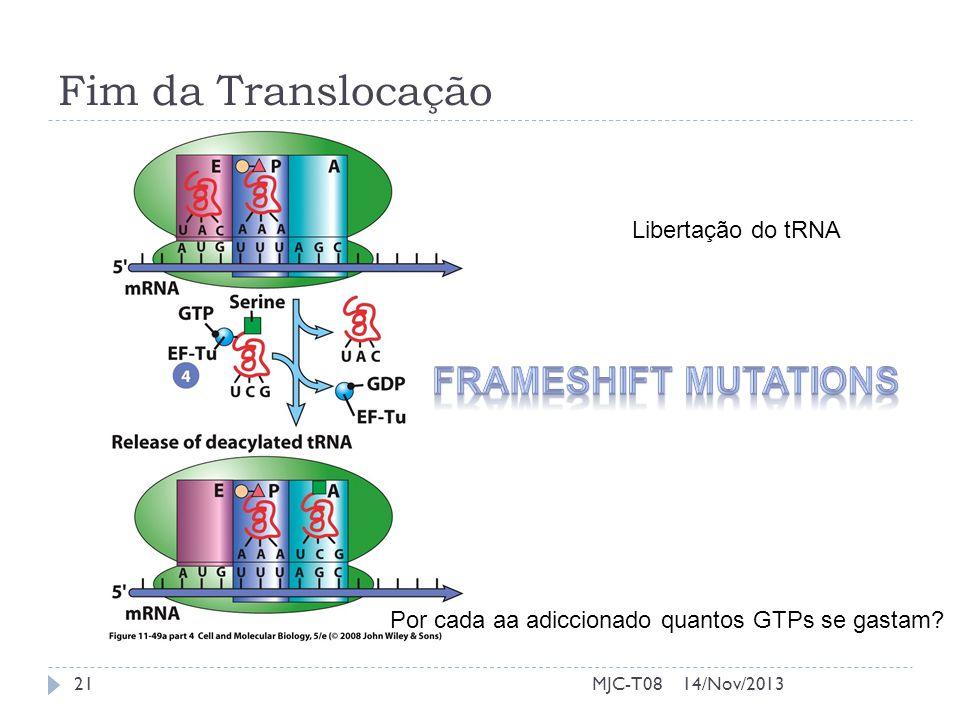 Fim da Translocação Frameshift mutations Libertação do tRNA