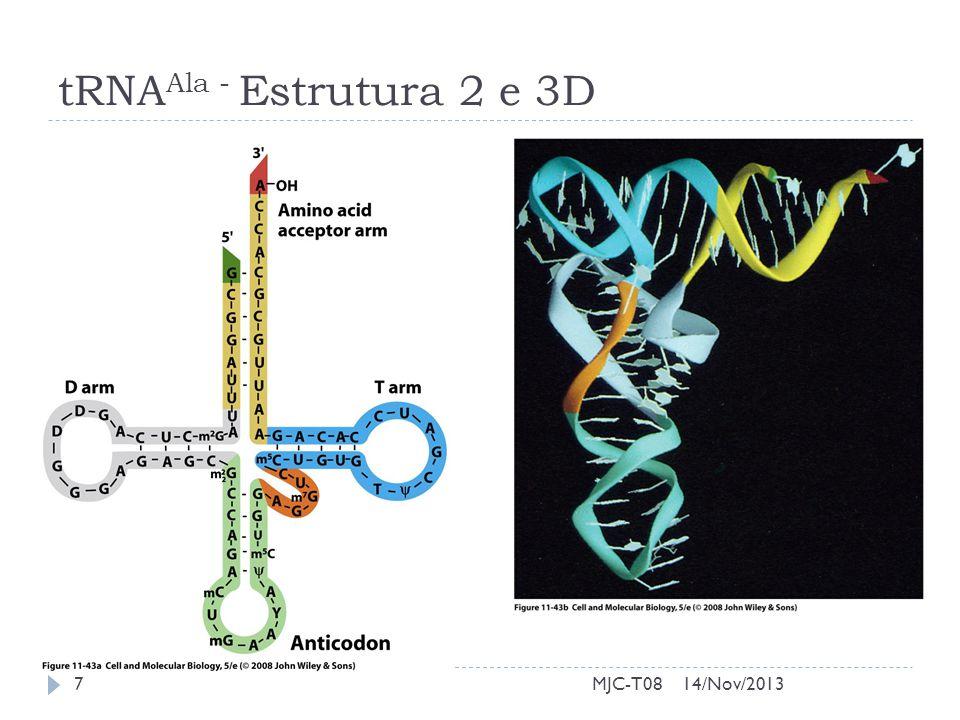 tRNAAla - Estrutura 2 e 3D MJC-T08 14/Nov/2013