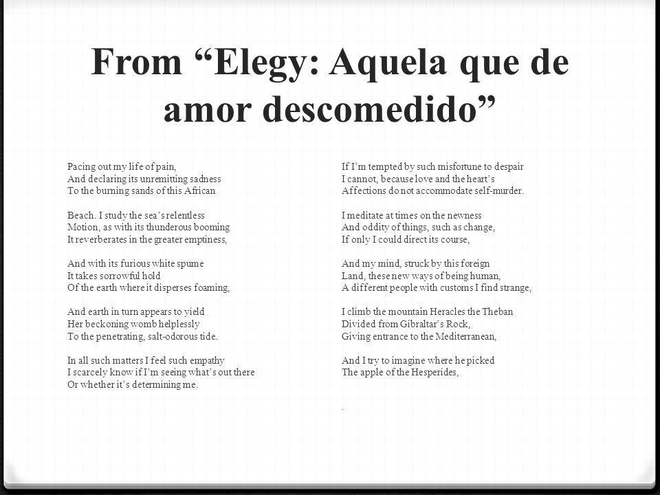 From Elegy: Aquela que de amor descomedido