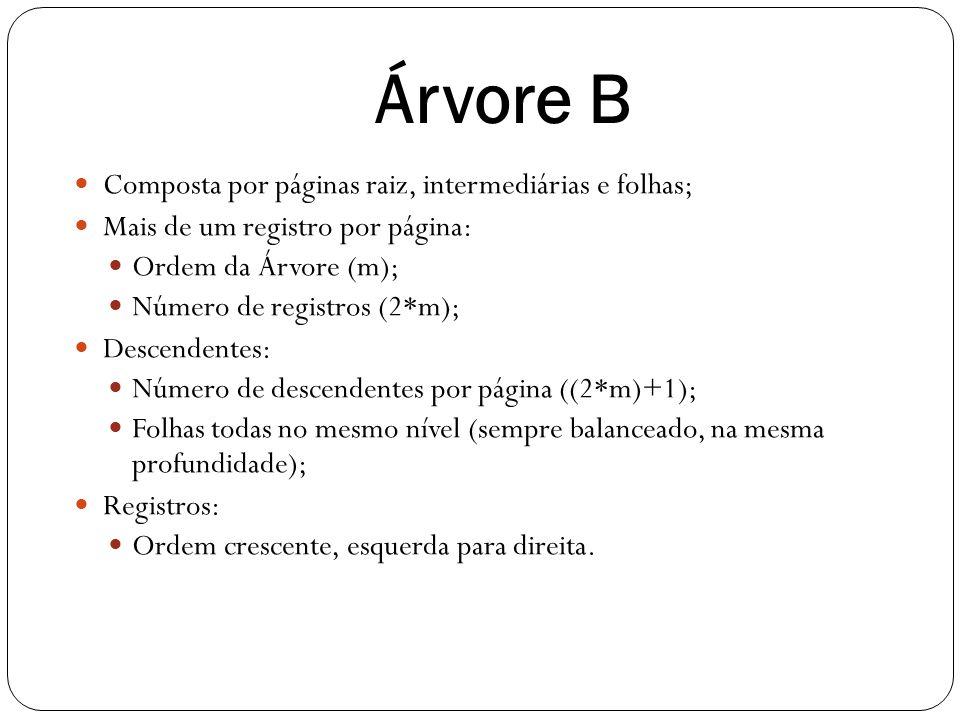 Árvore B Composta por páginas raiz, intermediárias e folhas;