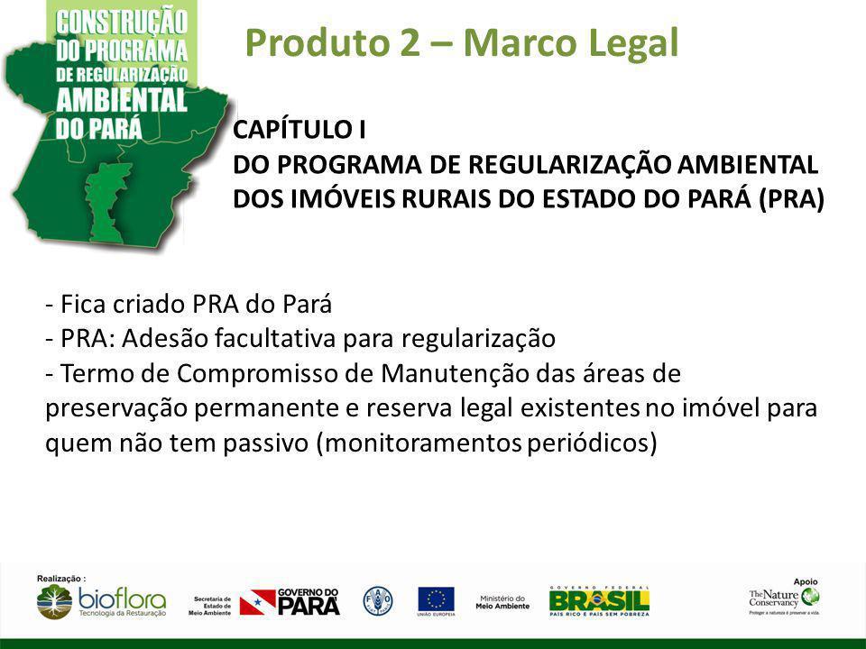 Produto 2 – Marco Legal CAPÍTULO I