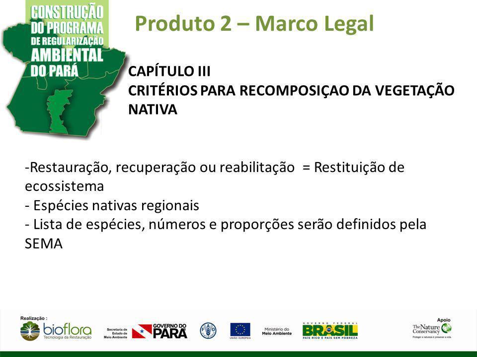 Produto 2 – Marco Legal CAPÍTULO III