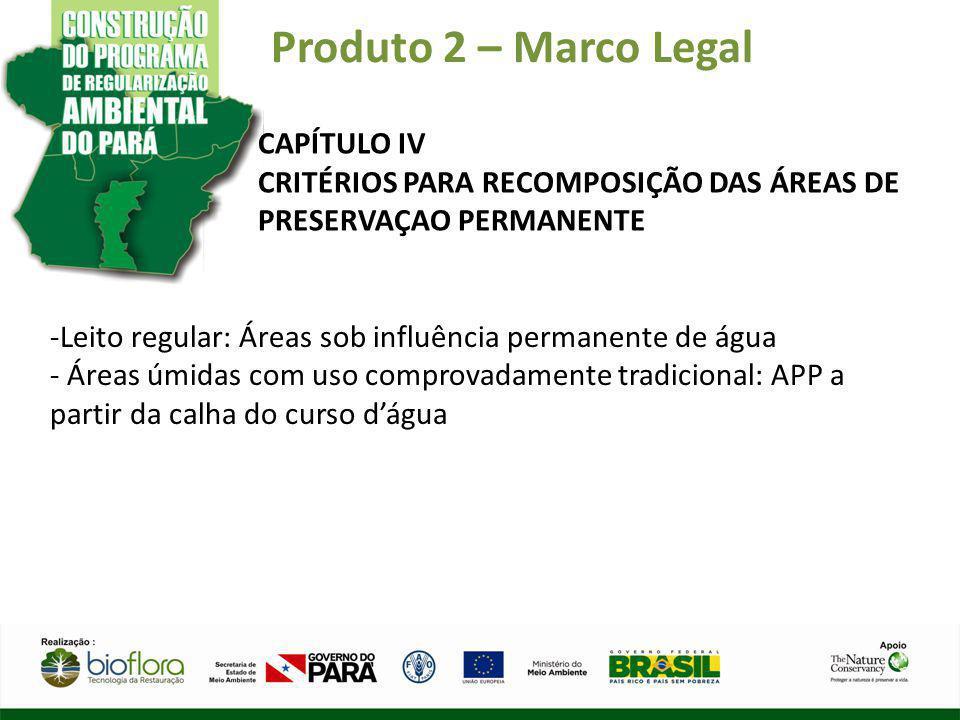 Produto 2 – Marco Legal CAPÍTULO IV