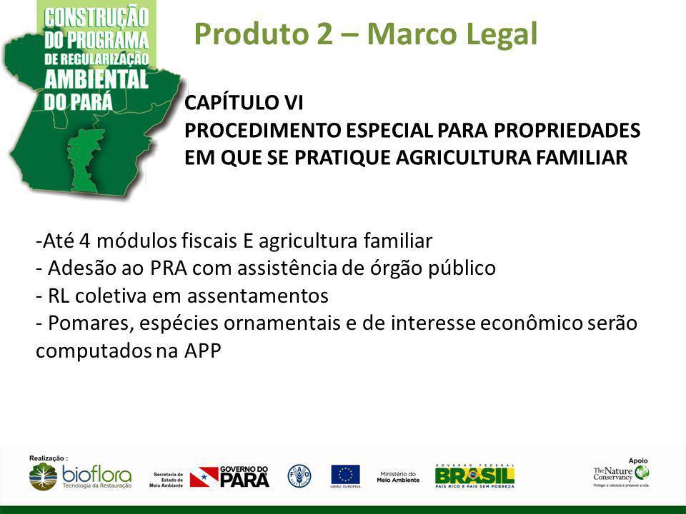 Produto 2 – Marco Legal CAPÍTULO VI