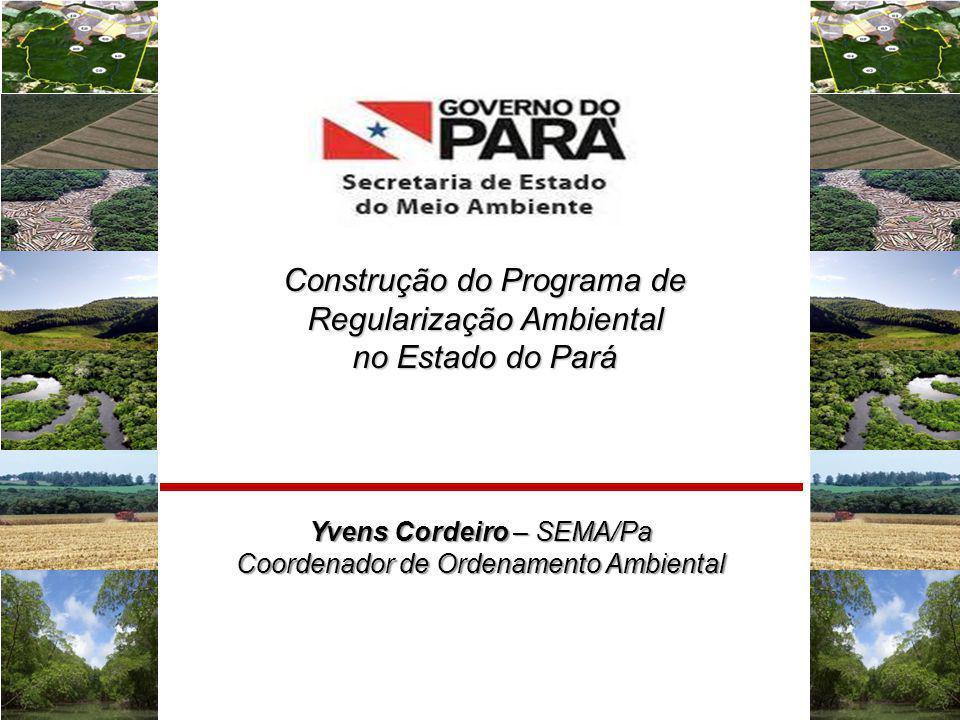 Construção do Programa de Regularização Ambiental no Estado do Pará
