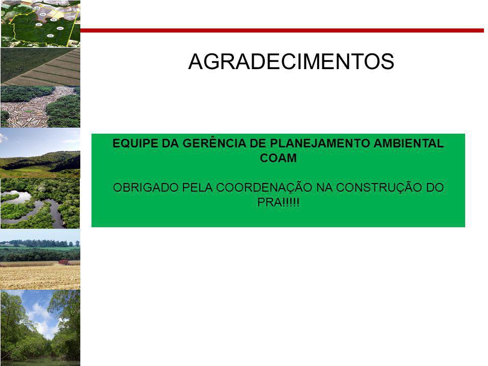 EQUIPE DA GERÊNCIA DE PLANEJAMENTO AMBIENTAL