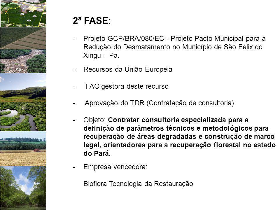 2ª FASE: Projeto GCP/BRA/080/EC - Projeto Pacto Municipal para a Redução do Desmatamento no Município de São Félix do Xingu – Pa.