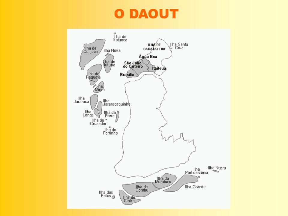 O DAOUT