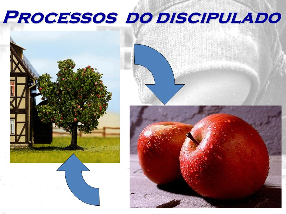 Processos do discipulado