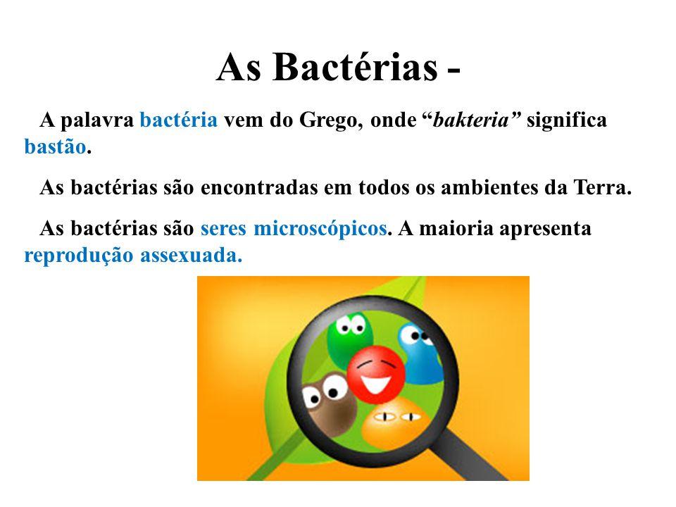 As Bactérias - A palavra bactéria vem do Grego, onde bakteria significa bastão. As bactérias são encontradas em todos os ambientes da Terra.