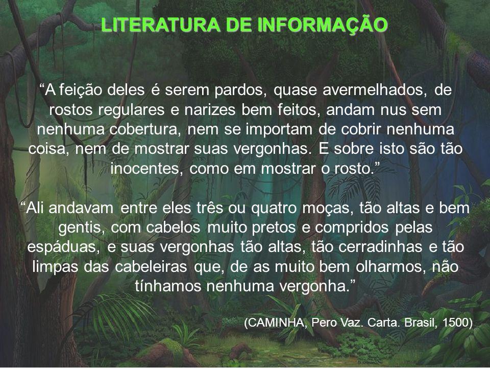 LITERATURA DE INFORMAÇÃO