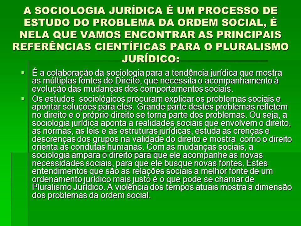 A SOCIOLOGIA JURÍDICA É UM PROCESSO DE ESTUDO DO PROBLEMA DA ORDEM SOCIAL, É NELA QUE VAMOS ENCONTRAR AS PRINCIPAIS REFERÊNCIAS CIENTÍFICAS PARA O PLURALISMO JURÍDICO: