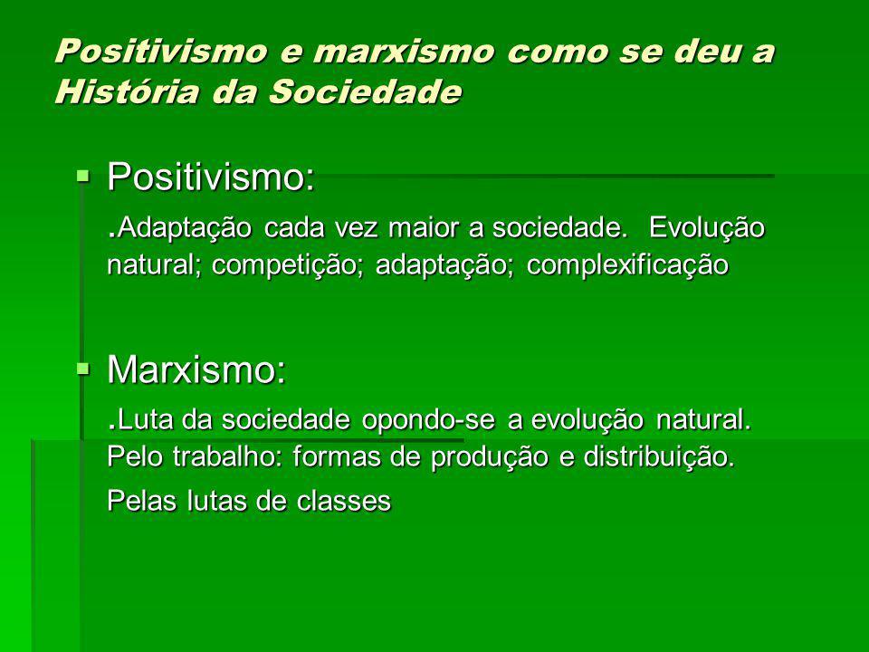 Positivismo e marxismo como se deu a História da Sociedade