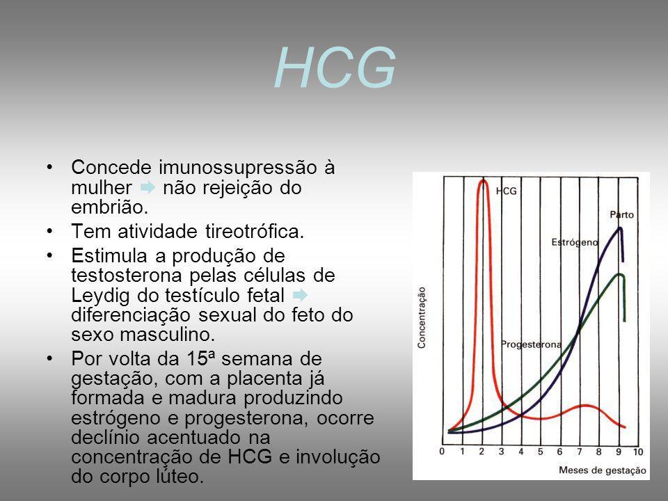 HCG Concede imunossupressão à mulher  não rejeição do embrião.