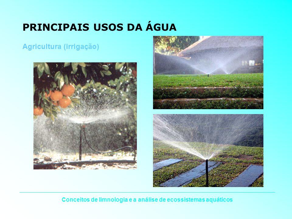 Conceitos de limnologia e a análise de ecossistemas aquáticos