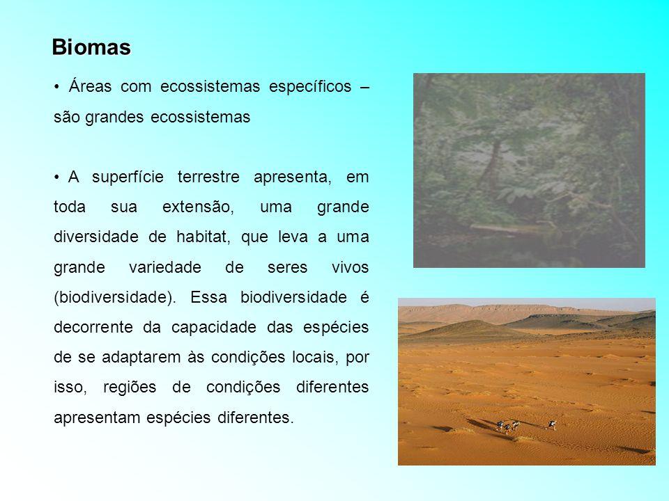Biomas Áreas com ecossistemas específicos – são grandes ecossistemas
