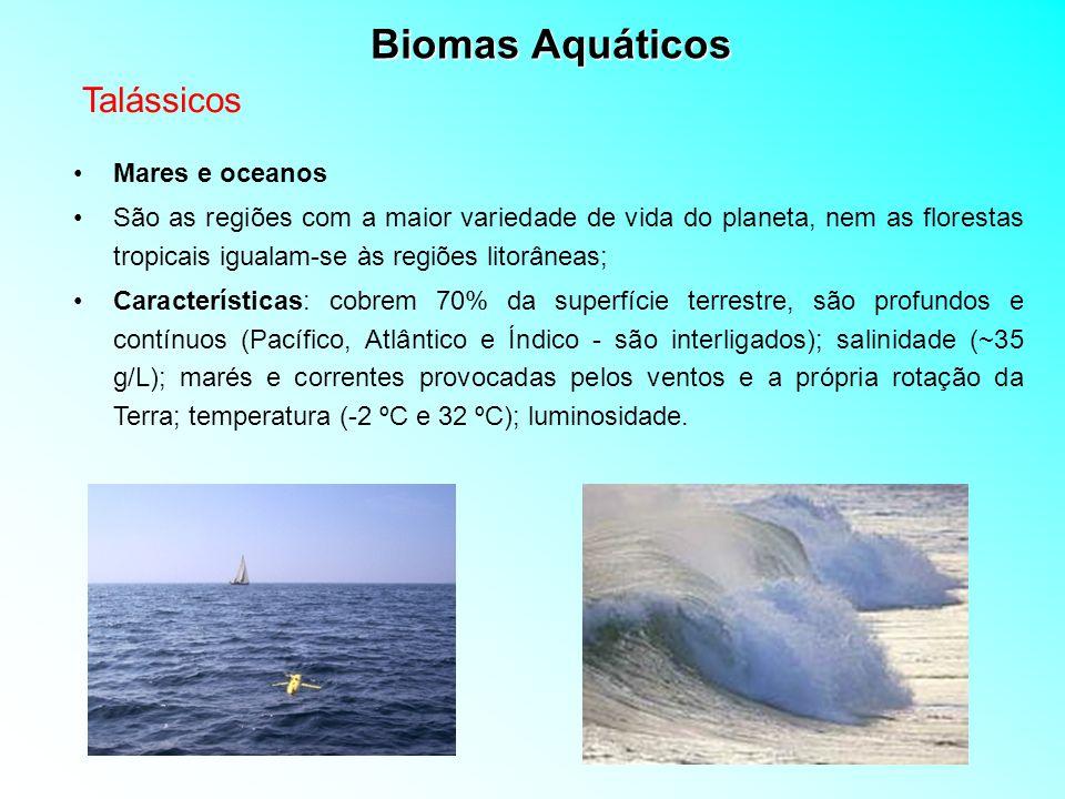 Biomas Aquáticos Talássicos Mares e oceanos