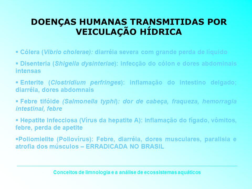 DOENÇAS HUMANAS TRANSMITIDAS POR VEICULAÇÃO HÍDRICA