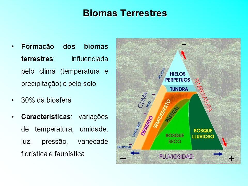 Biomas Terrestres Formação dos biomas terrestres: influenciada pelo clima (temperatura e precipitação) e pelo solo.