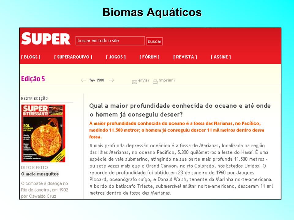 Biomas Aquáticos 4