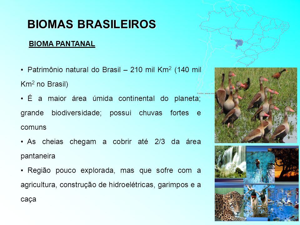 BIOMAS BRASILEIROS BIOMA PANTANAL