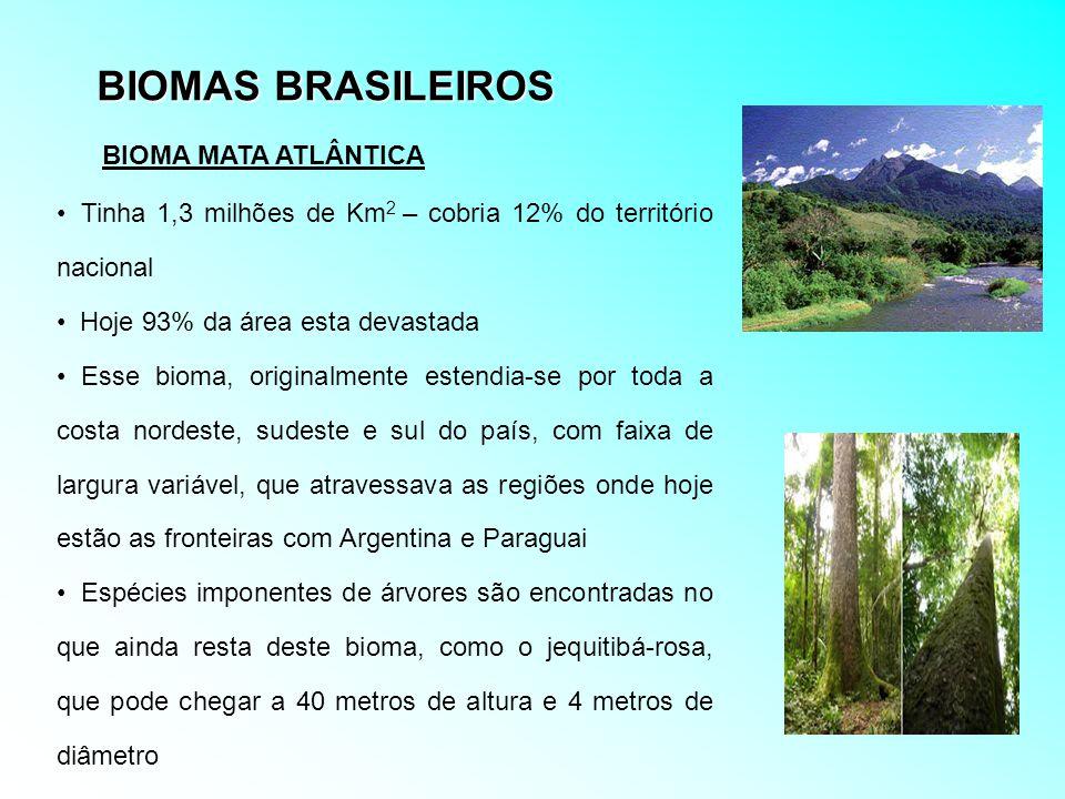 BIOMAS BRASILEIROS BIOMA MATA ATLÂNTICA