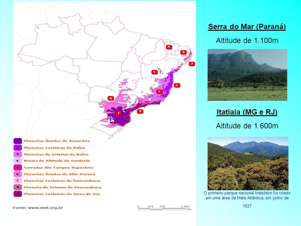 Serra do Mar (Paraná) Itatiaia (MG e RJ)