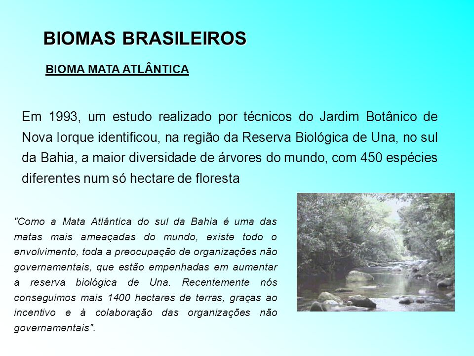 BIOMAS BRASILEIROS BIOMA MATA ATLÂNTICA.