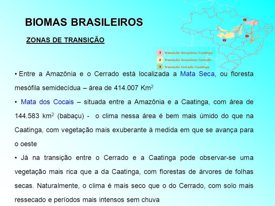 BIOMAS BRASILEIROS ZONAS DE TRANSIÇÃO