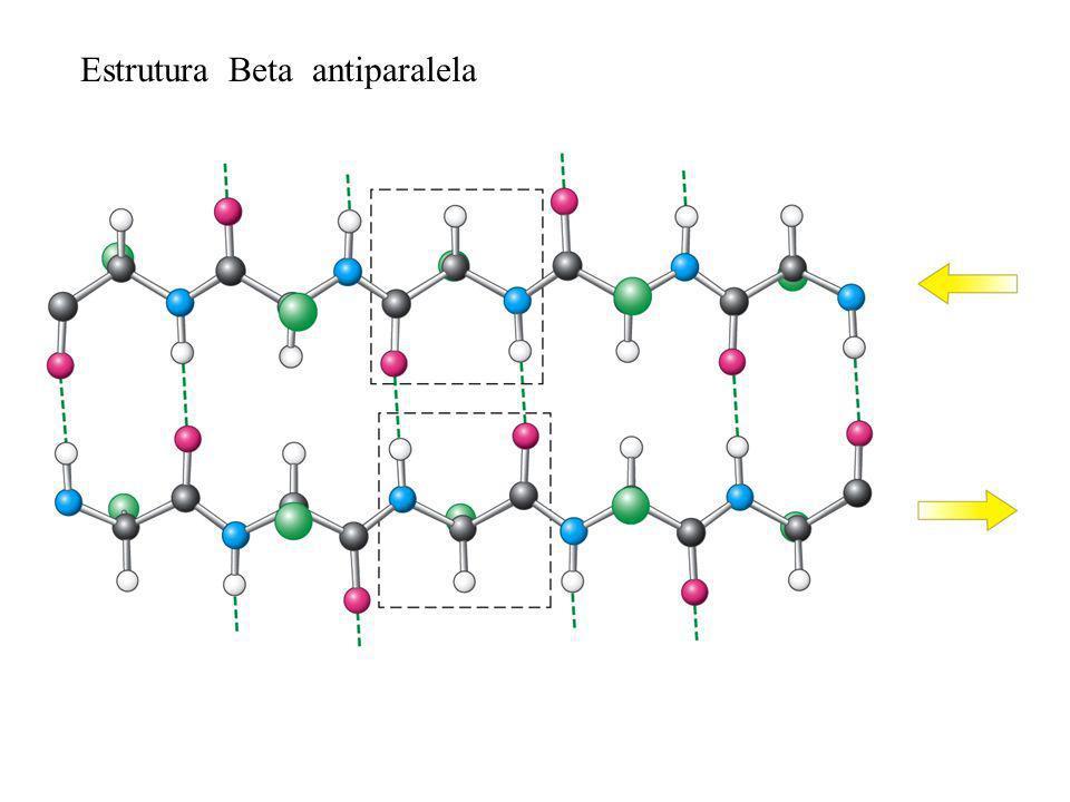 Estrutura Beta antiparalela