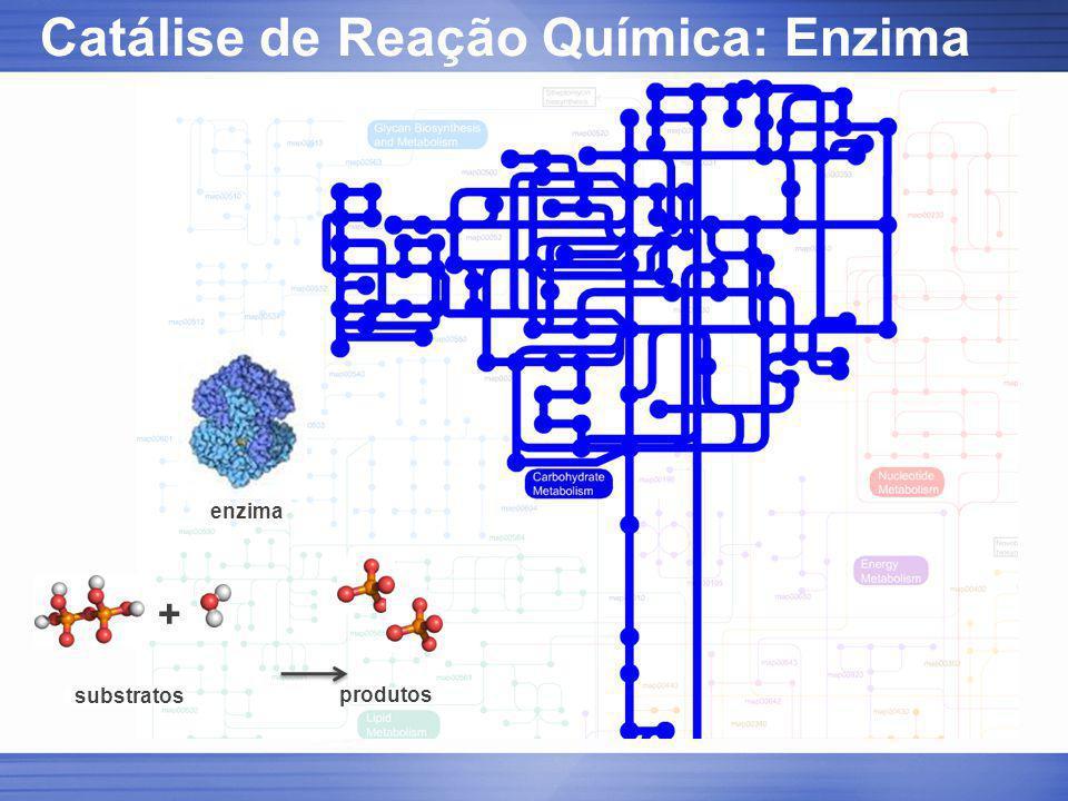 Catálise de Reação Química: Enzima
