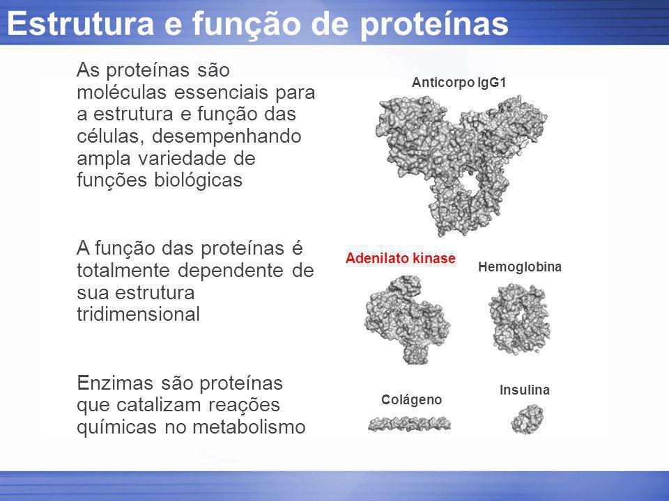 Estrutura e função de proteínas