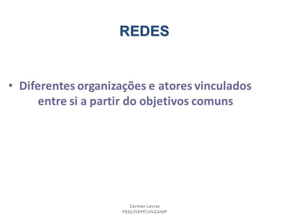 REDES Diferentes organizações e atores vinculados entre si a partir do objetivos comuns. Carmen Lavras.