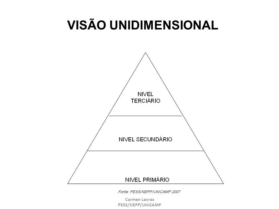 VISÃO UNIDIMENSIONAL Carmen Lavras PESS/NEPP/UNICAMP 27