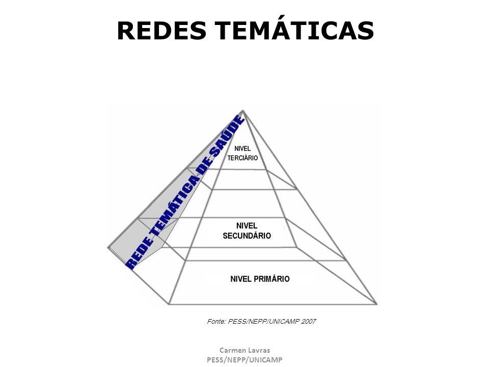 REDES TEMÁTICAS Carmen Lavras PESS/NEPP/UNICAMP 29