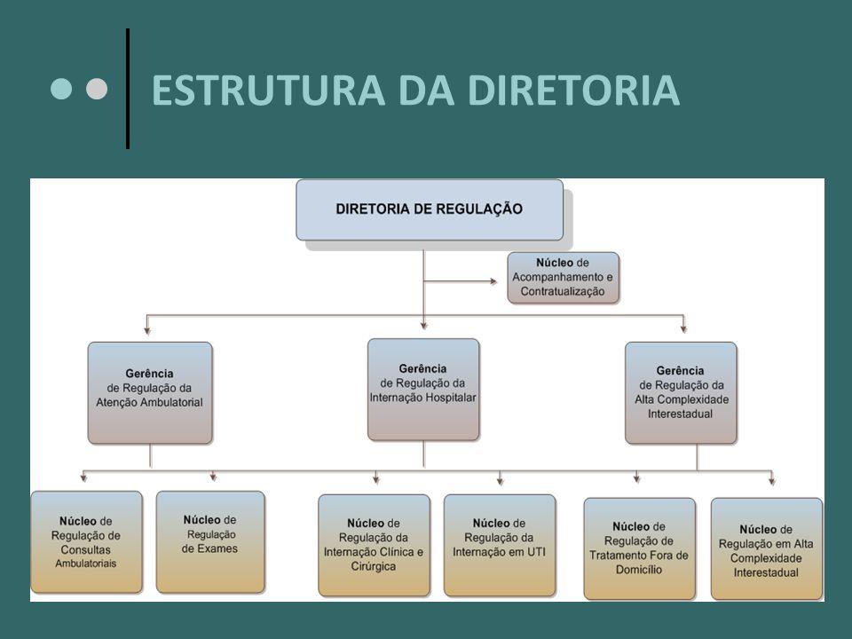 ESTRUTURA DA DIRETORIA