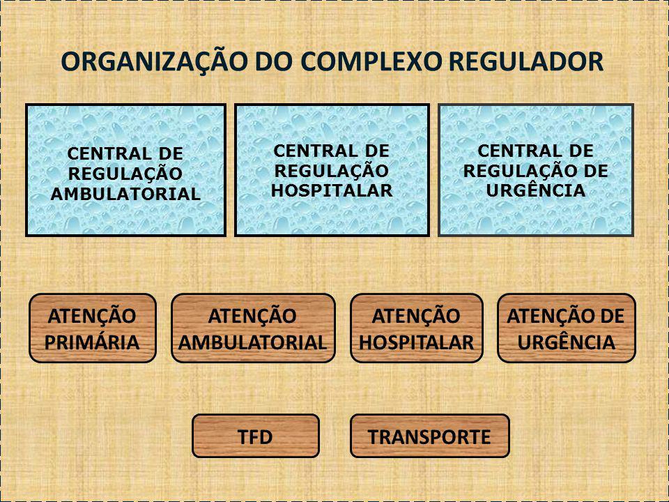 ORGANIZAÇÃO DO COMPLEXO REGULADOR