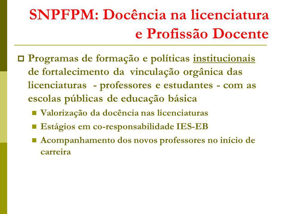 SNPFPM: Docência na licenciatura e Profissão Docente