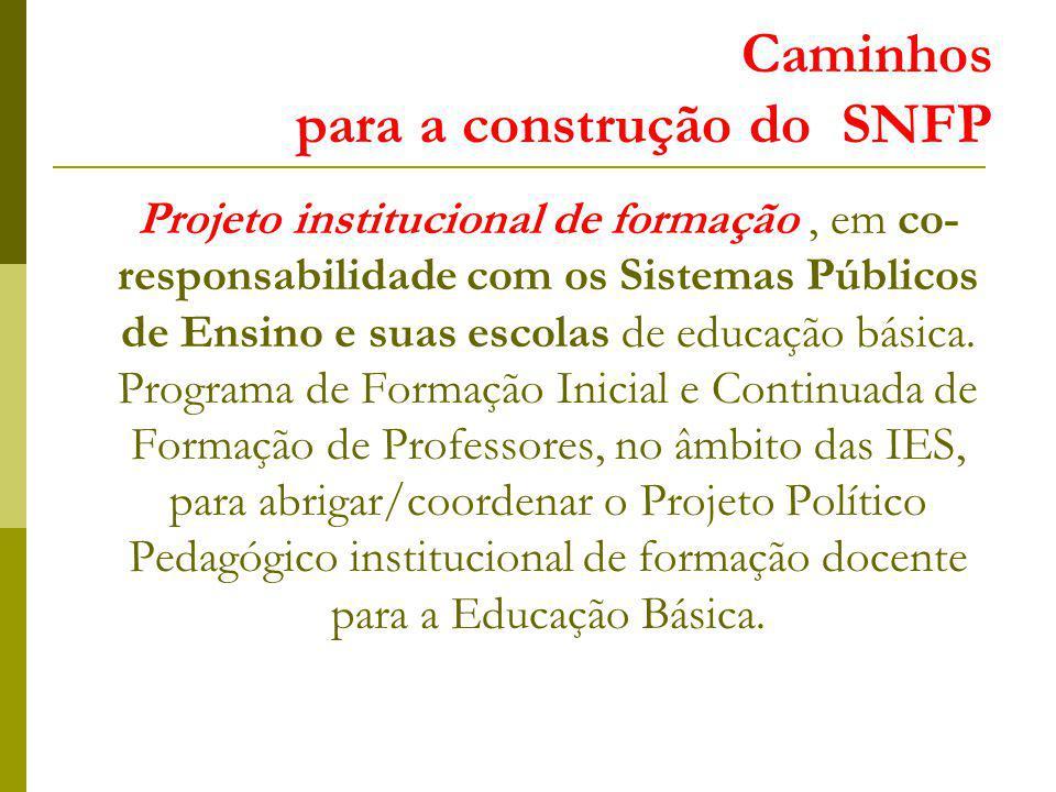 Caminhos para a construção do SNFP