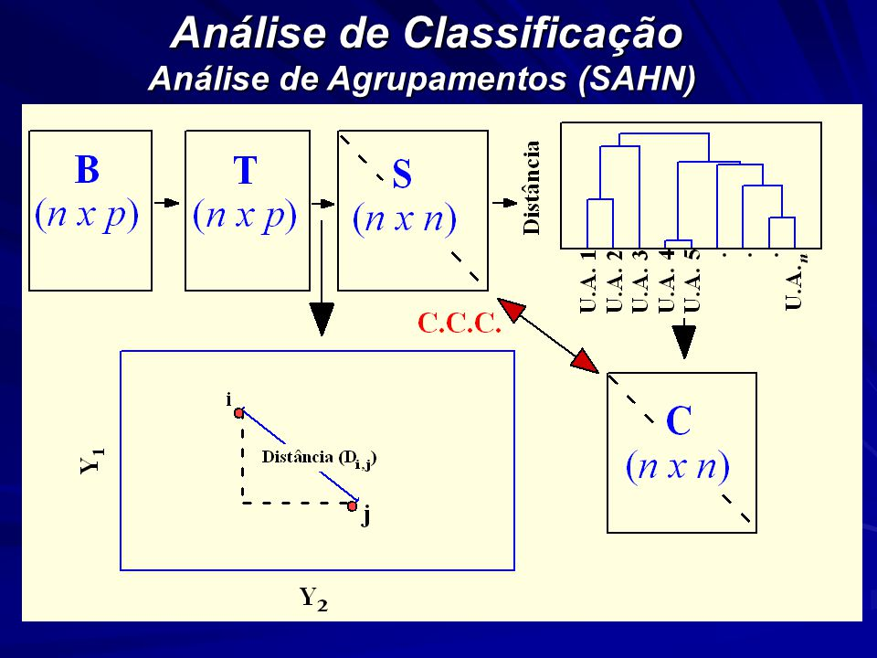 Análise de Classificação