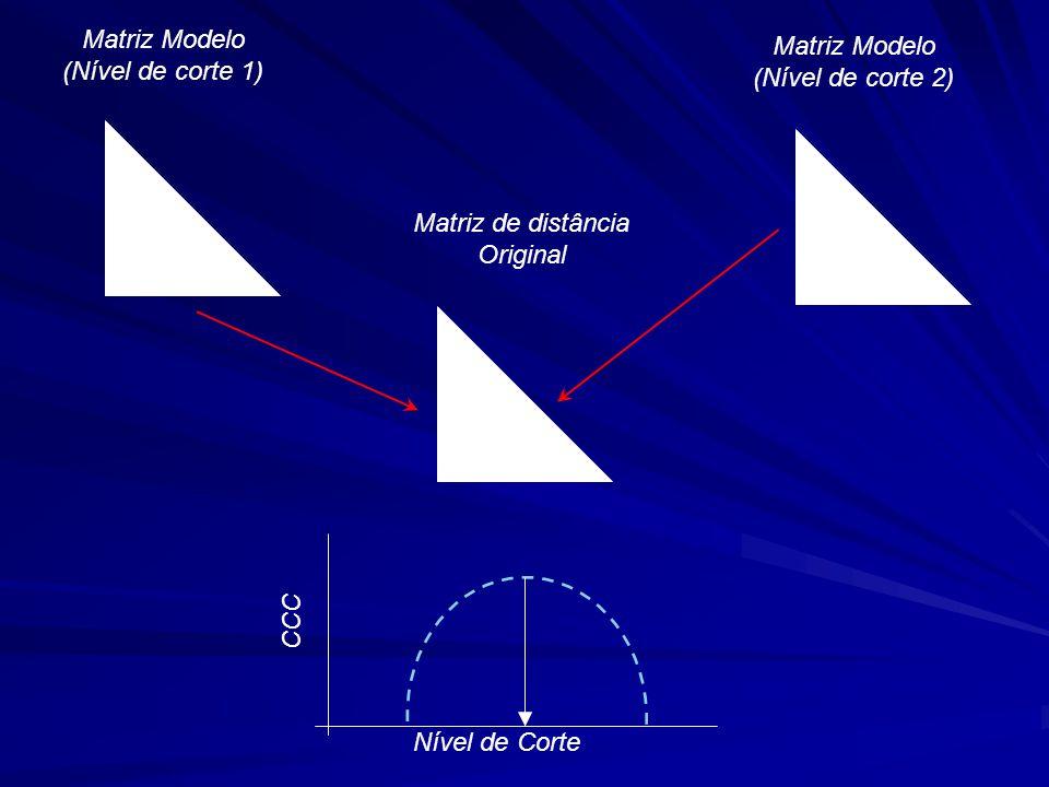 Matriz Modelo (Nível de corte 1) Matriz Modelo. (Nível de corte 2) Matriz de distância. Original.