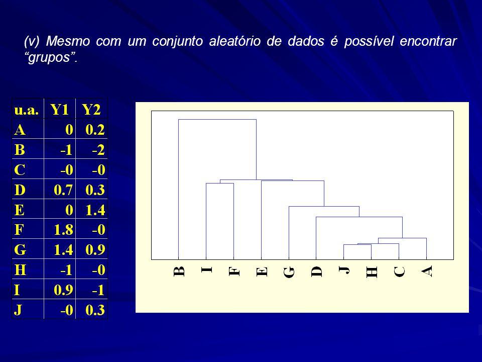 (v) Mesmo com um conjunto aleatório de dados é possível encontrar grupos .