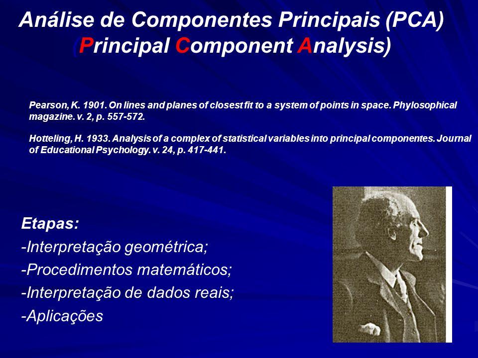 Análise de Componentes Principais (PCA) (Principal Component Analysis)
