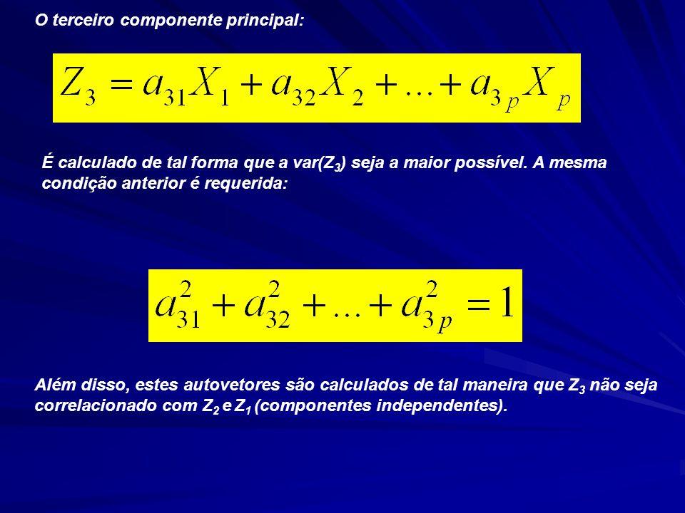 O terceiro componente principal: