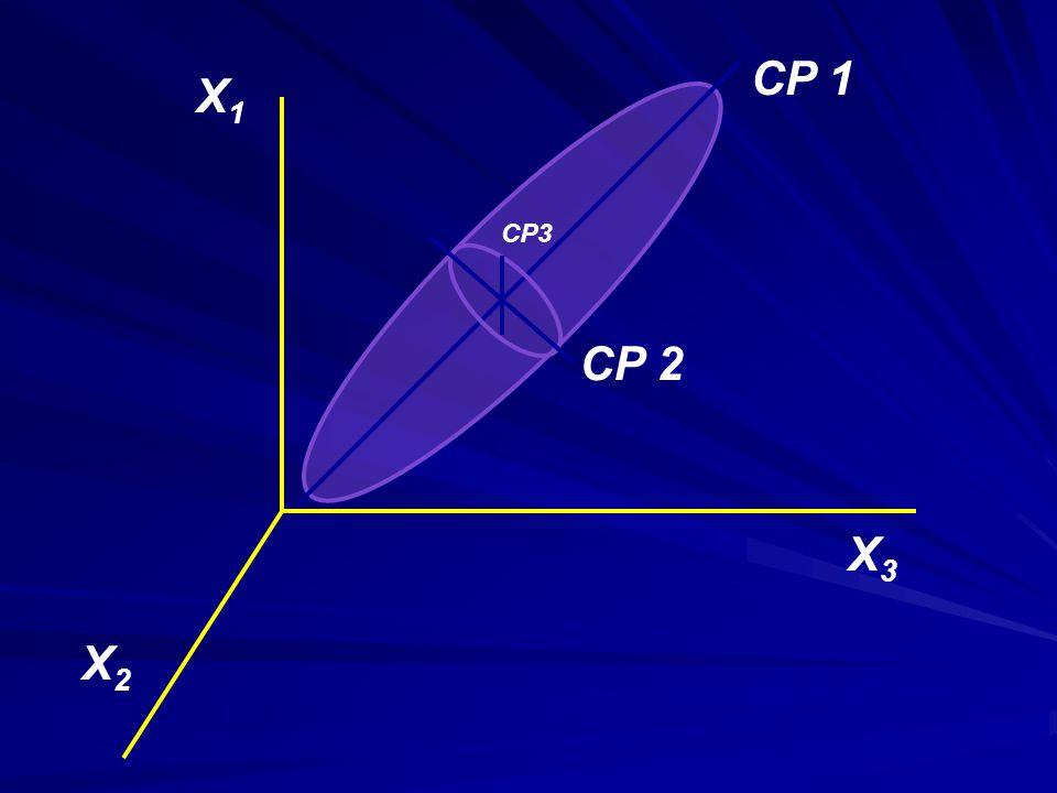 CP 1 X1 CP3 CP 2 X3 X2