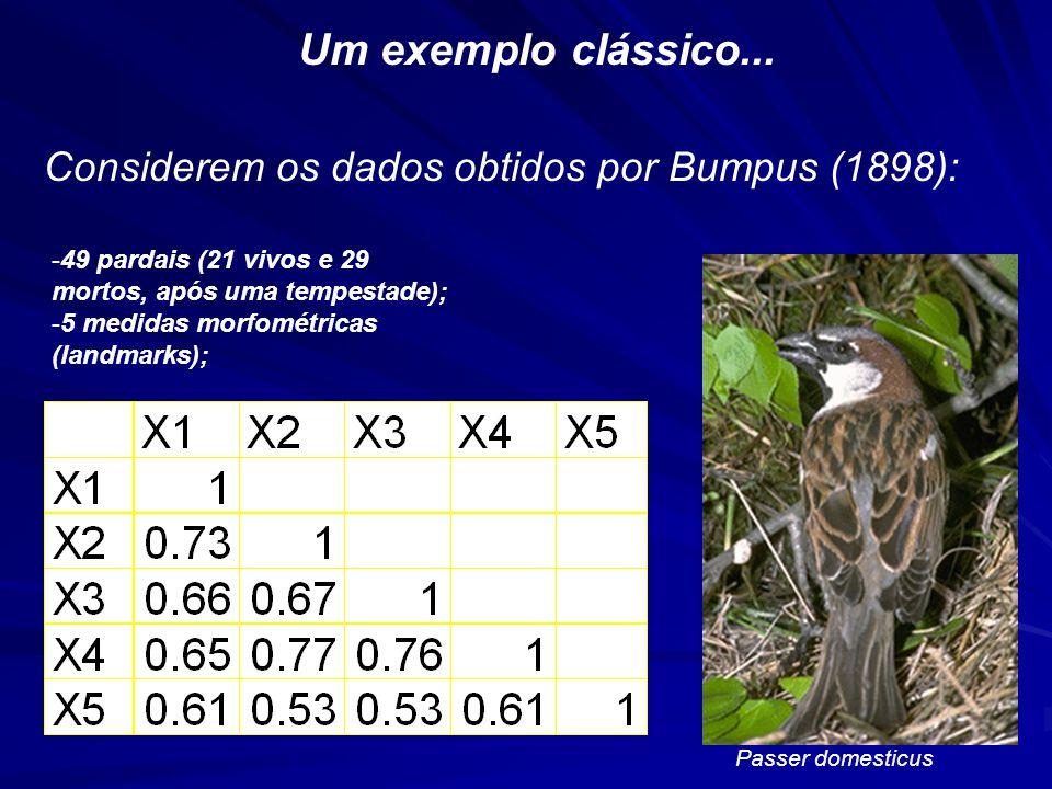 Um exemplo clássico... Considerem os dados obtidos por Bumpus (1898):