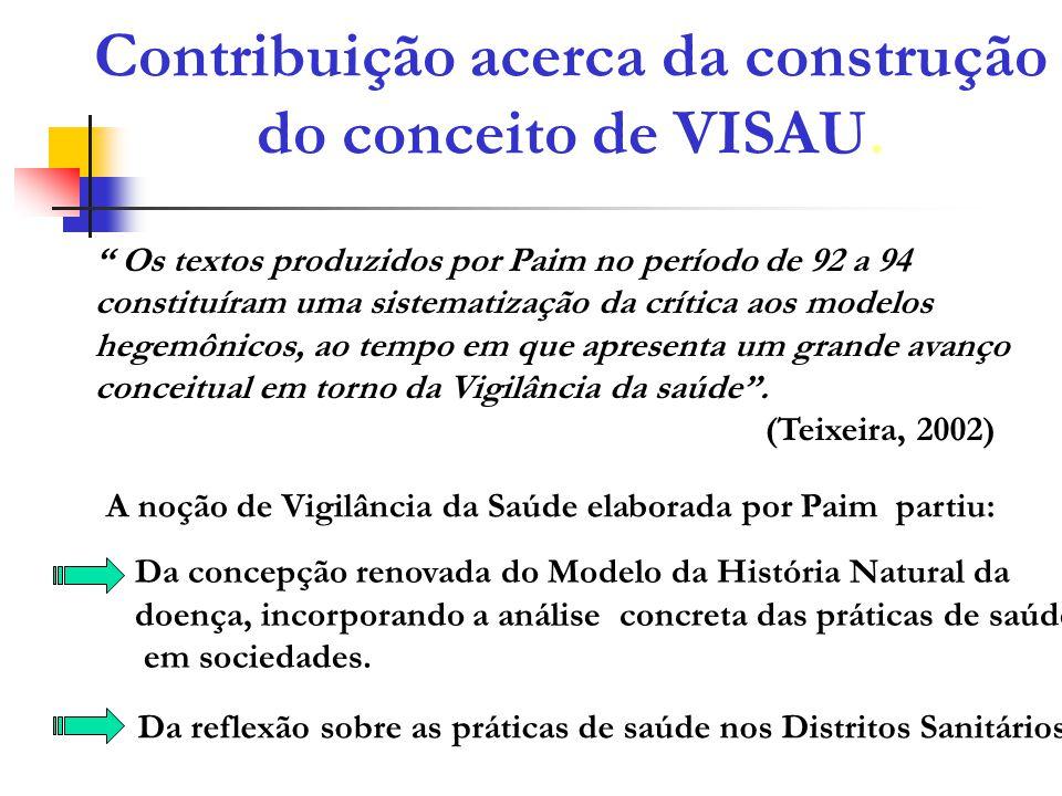 Contribuição acerca da construção do conceito de VISAU.