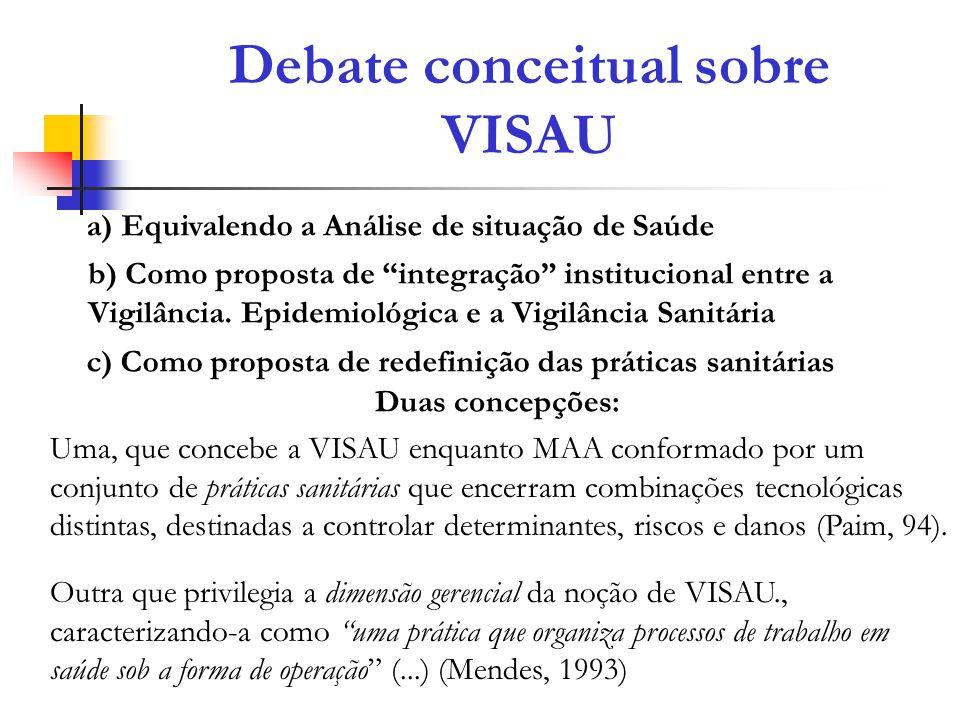 Debate conceitual sobre VISAU
