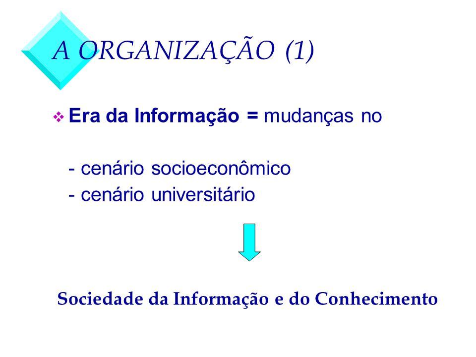 A ORGANIZAÇÃO (1) Era da Informação = mudanças no
