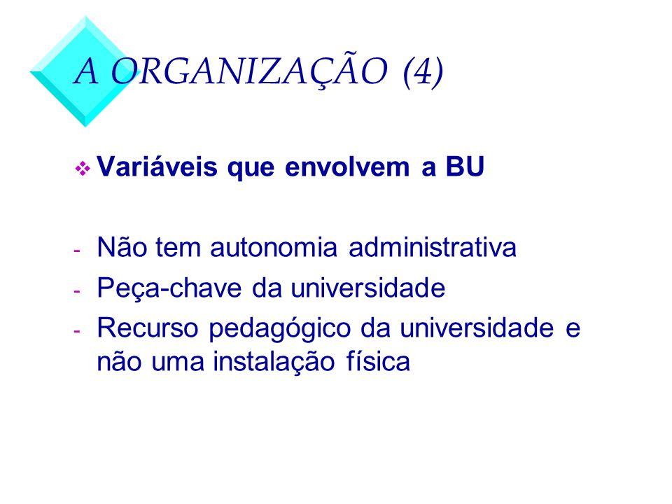 A ORGANIZAÇÃO (4) Variáveis que envolvem a BU